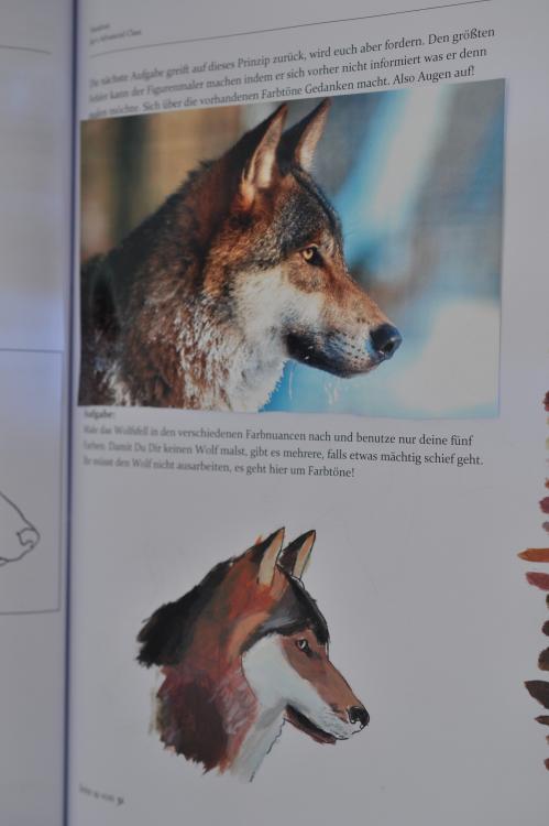 Wolf.thumb.JPG.9131edc289611b21cbcdaa786