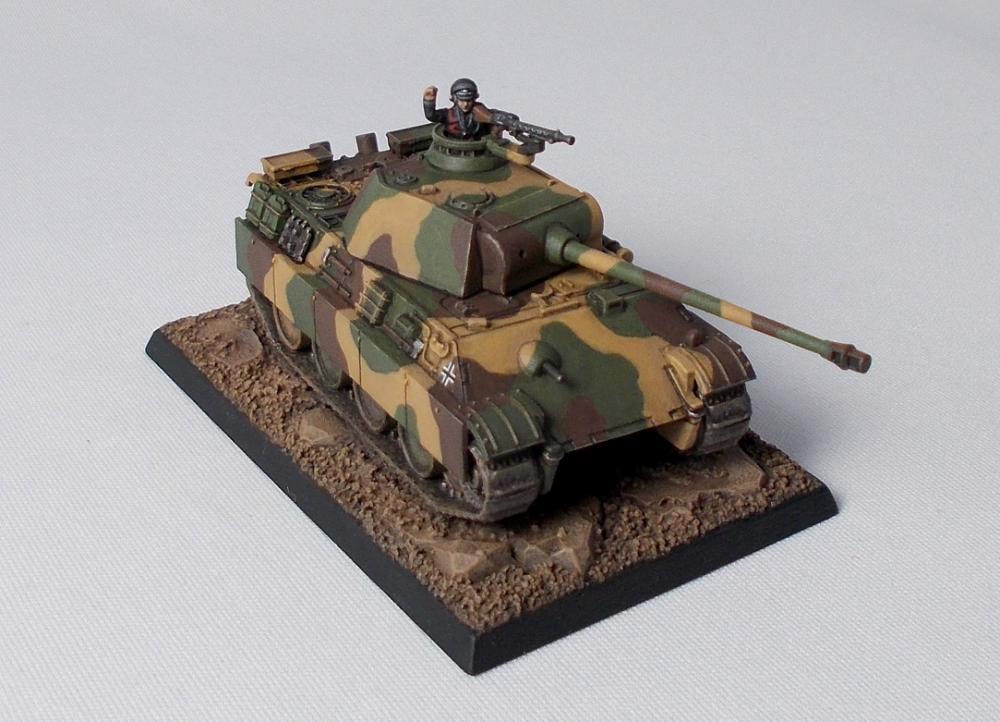 Panther003.thumb.JPG.41dca328c32761a8d6a
