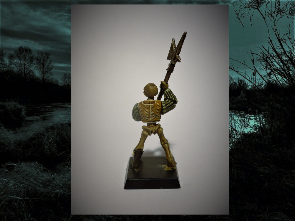 Skelett2.thumb.png.9d025c29b7455e77552ea25822ecc3c3.png