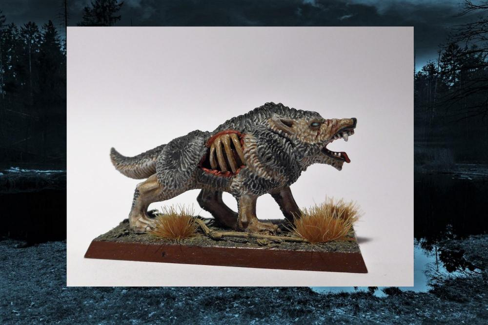 Wolf3.thumb.jpg.3c11105001cfd015a0ab4a4430ce5071.jpg