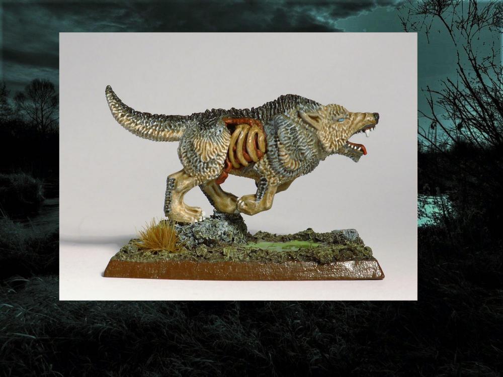Wolf7.thumb.jpg.9fa50eb4e1a183d01e507923b91a7425.jpg