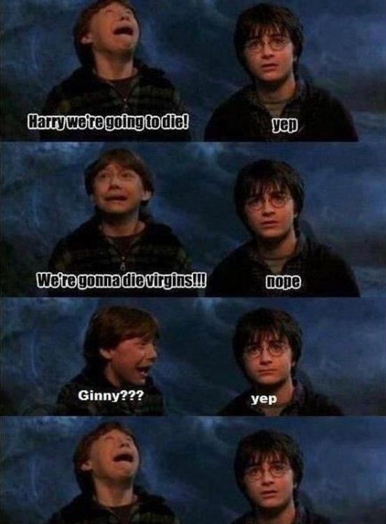comics-Harry-Potter-virginity-401530.jpeg