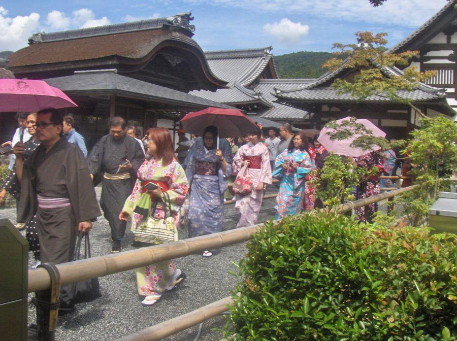 kimono.jpg.0d71c0f3cac926ec8093dcb50b1c8b23.jpg