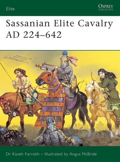 Sassanian_Elite_Cavalry_AD_224_642.jpg.ae549528dbc24bb258b7f46df2c6b426.jpg
