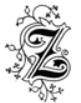 Z.png.8cf36401d0bafebaf364b1213950ad7b.png