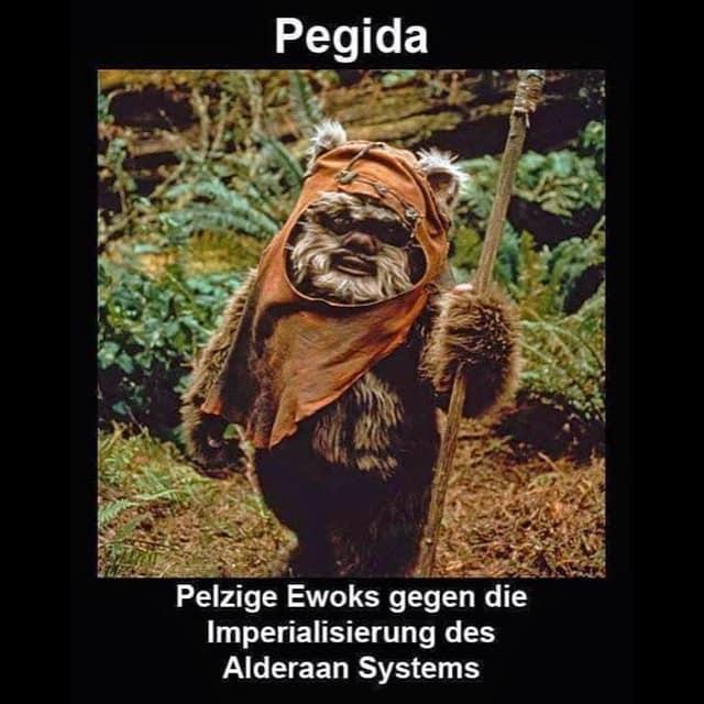 pegida-goes-star-wars.jpg.be035ee40466933f4103fde2ff9acdeb.jpg