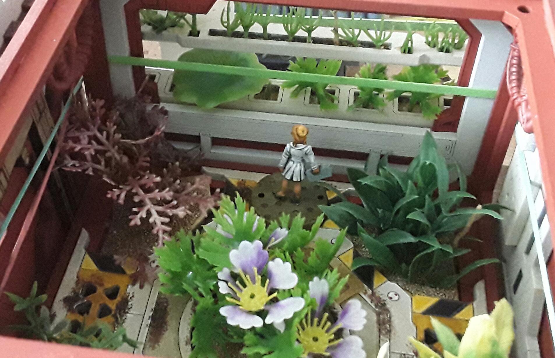 003f-Greenhouse.jpg.651e1ab4b337a5dc2be67ac4c222bfb7.jpg