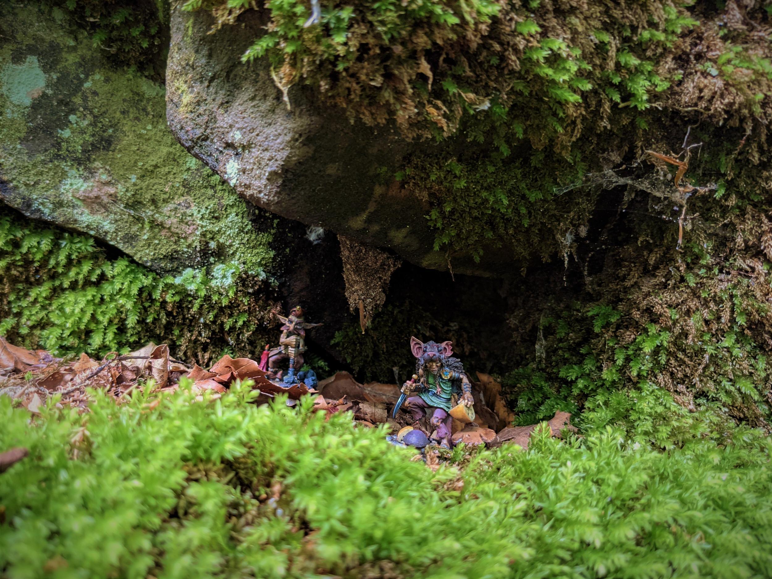 Gnome-Wald-1.jpg.ca4a5672547cf79e94150697f5534e45.jpg